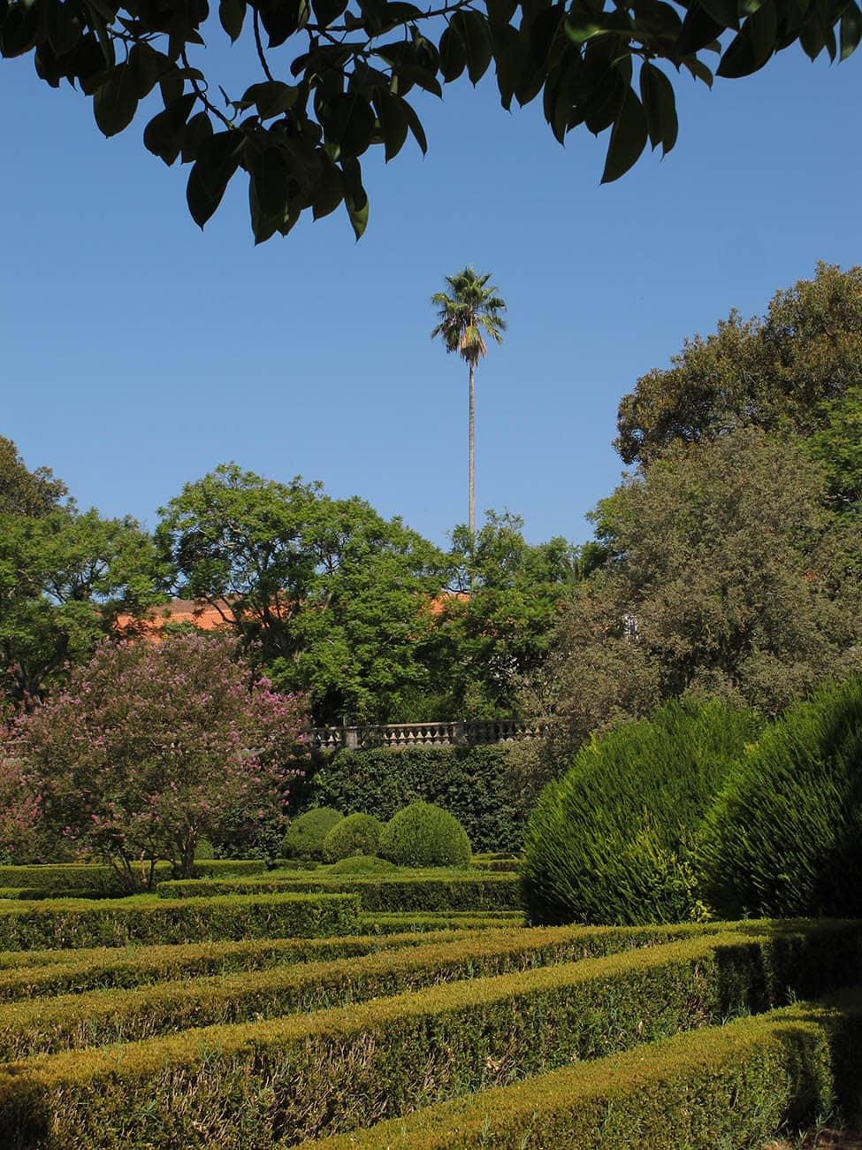 jardim-ajuda-lisboa-10