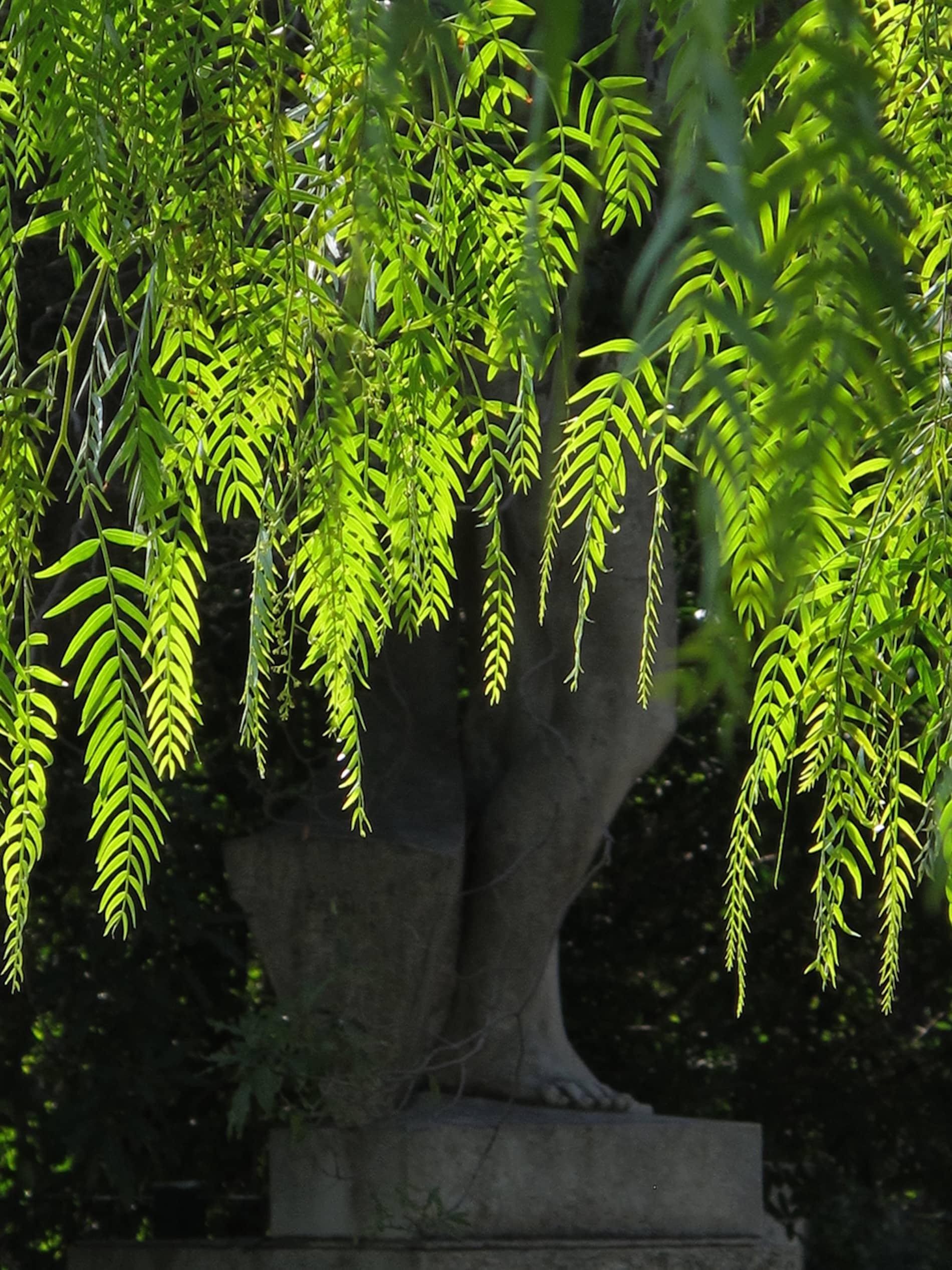jardim-eduardo_vii-lisboa-11