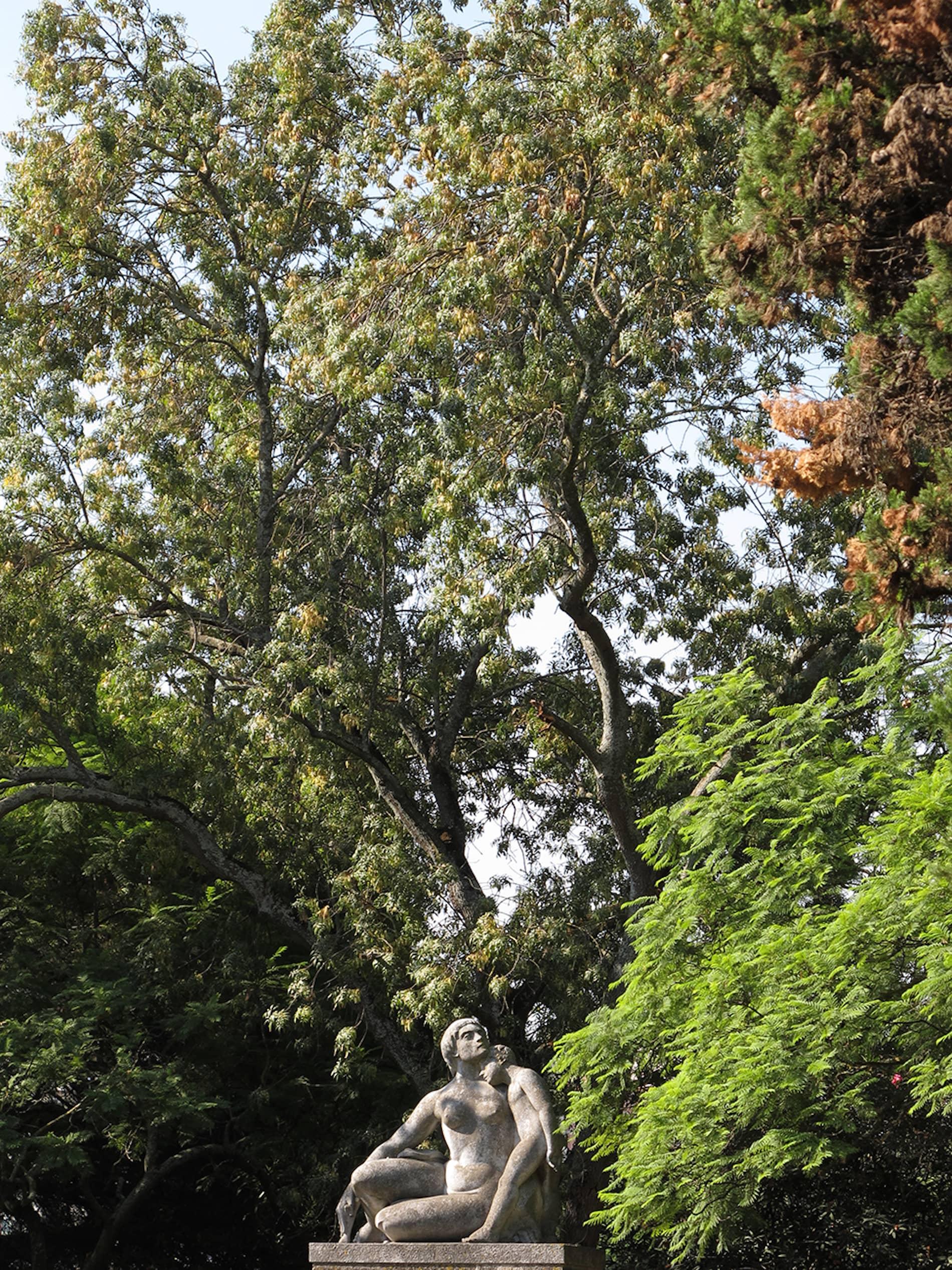 jardim-eduardo_vii-lisboa-2
