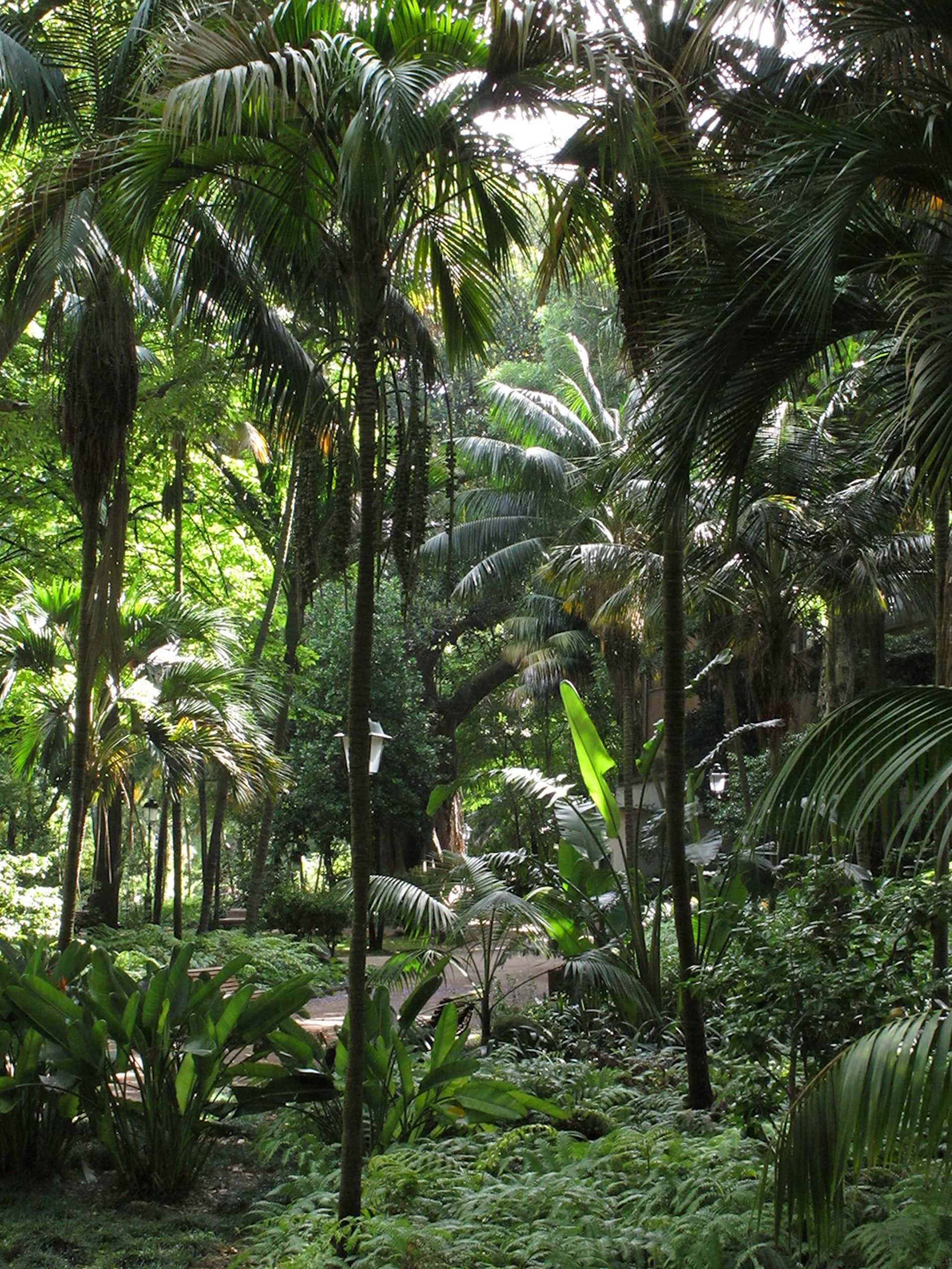 jardim-estrela-lisboa-2