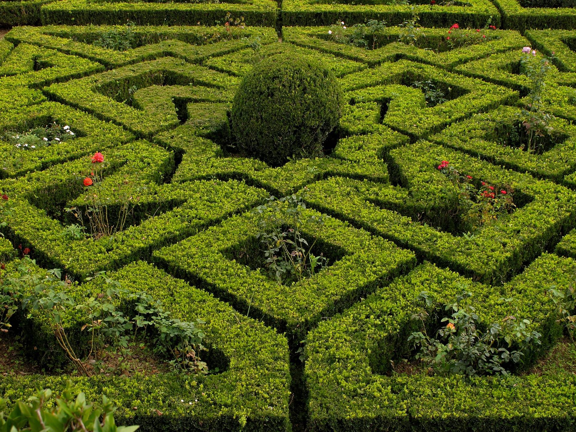 jardim-fronteira-lisboa-6