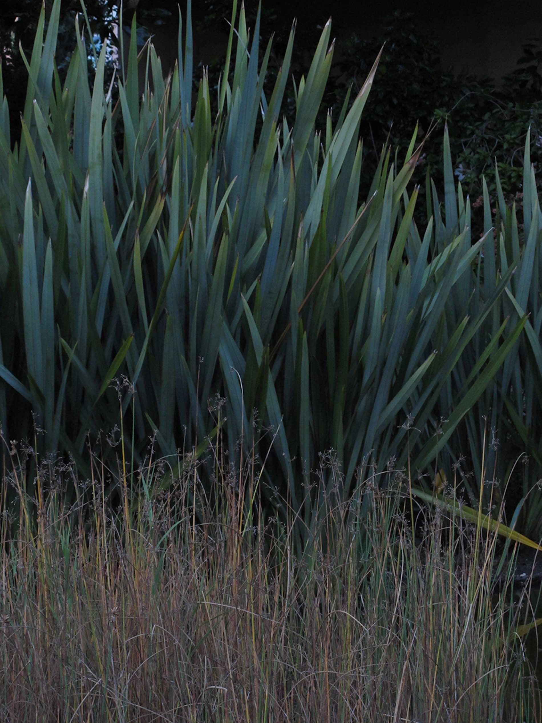 jardim-gulbenkian-lisboa-10
