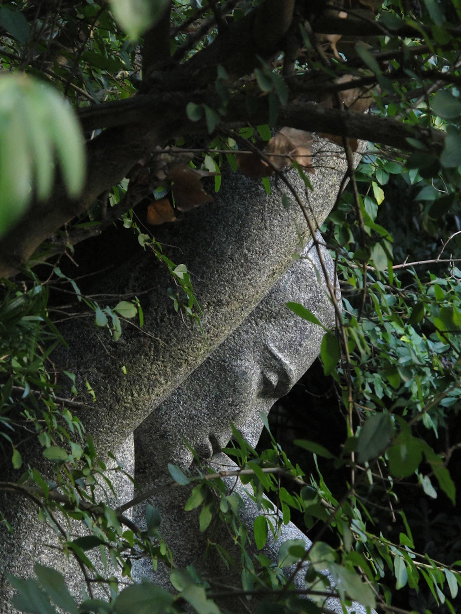 jardim-gulbenkian-lisboa-5