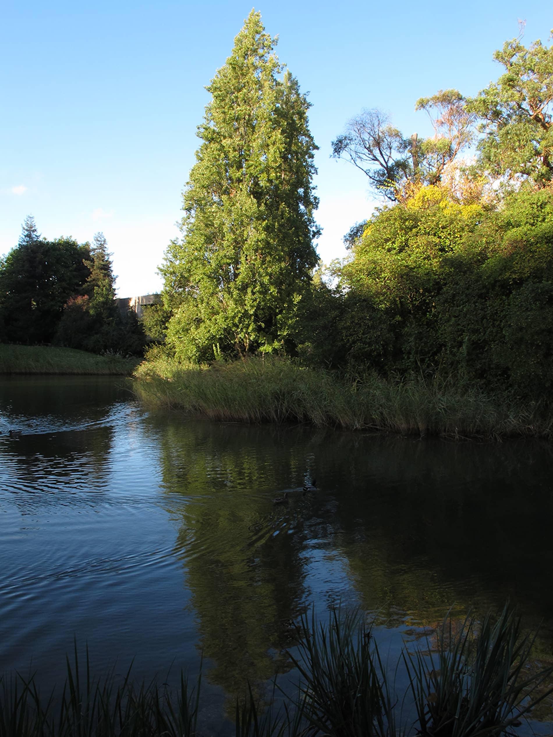 jardim-gulbenkian-lisboa-6
