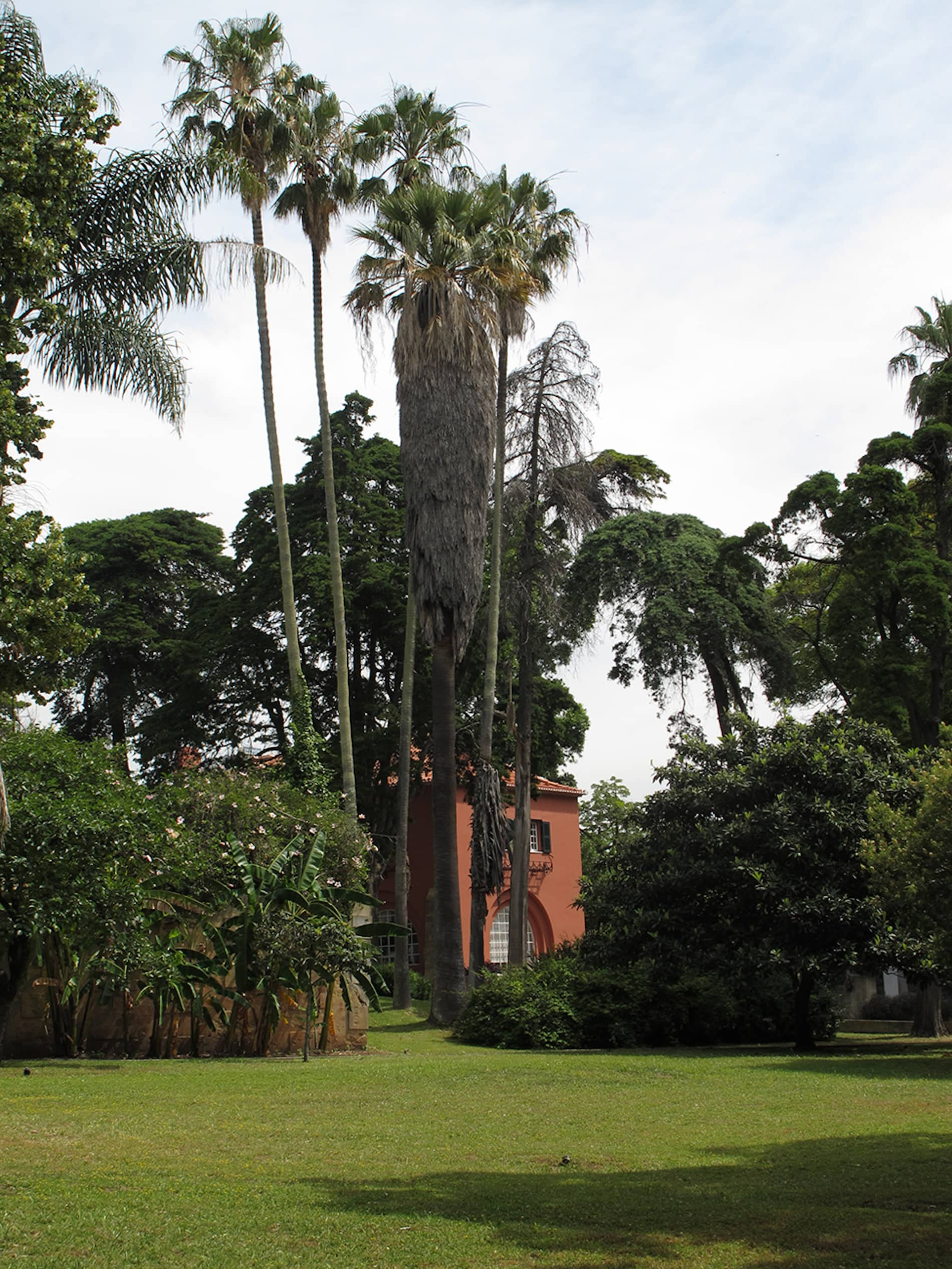 jardim-ultramar-lisboa-1