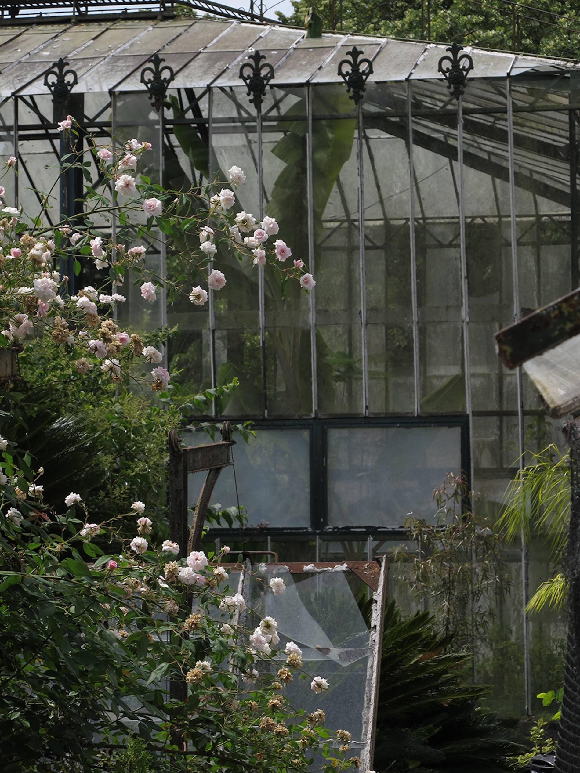 jardim-ultramar-lisboa-12