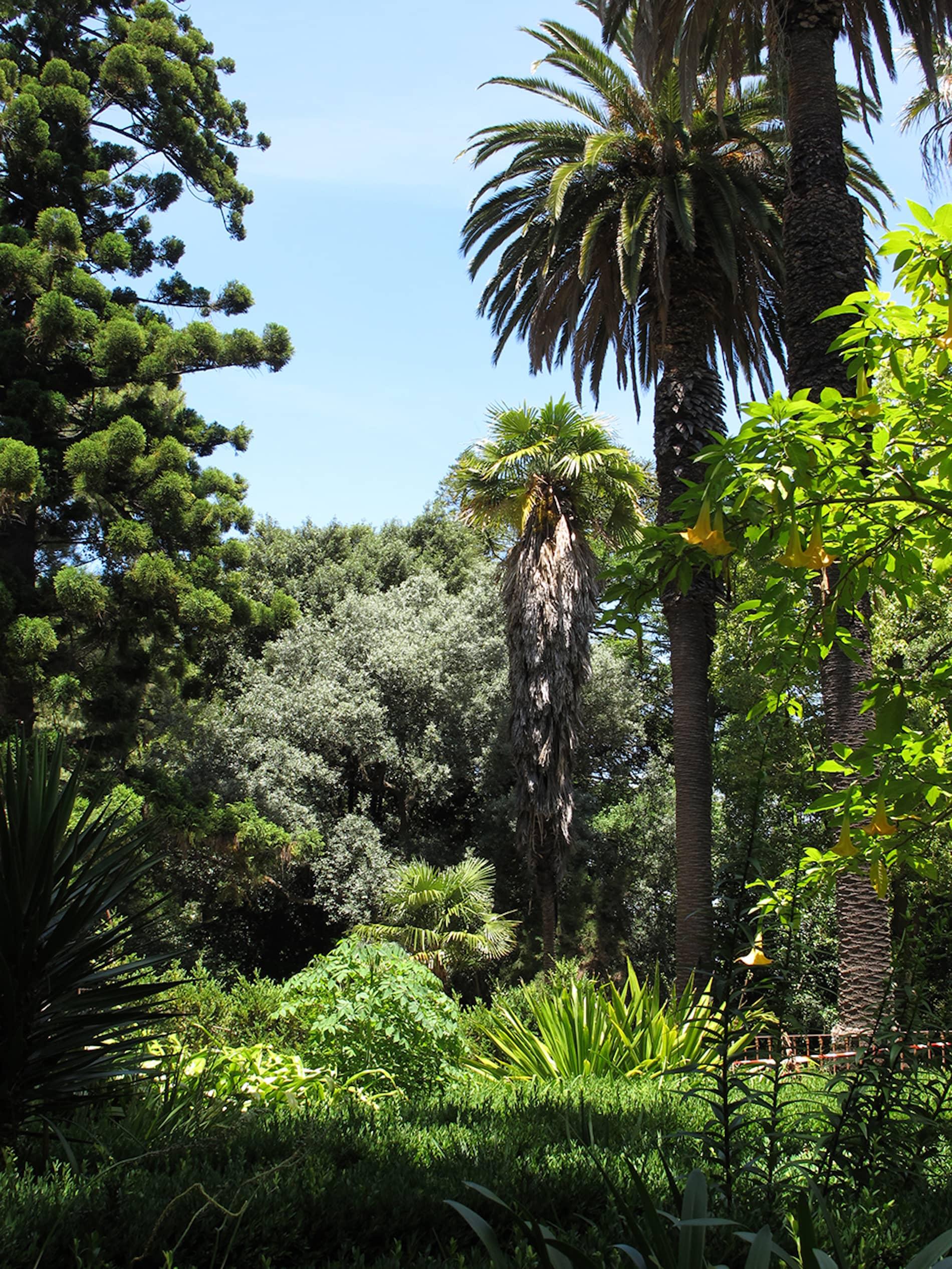 jardim-universidade-lisboa-12