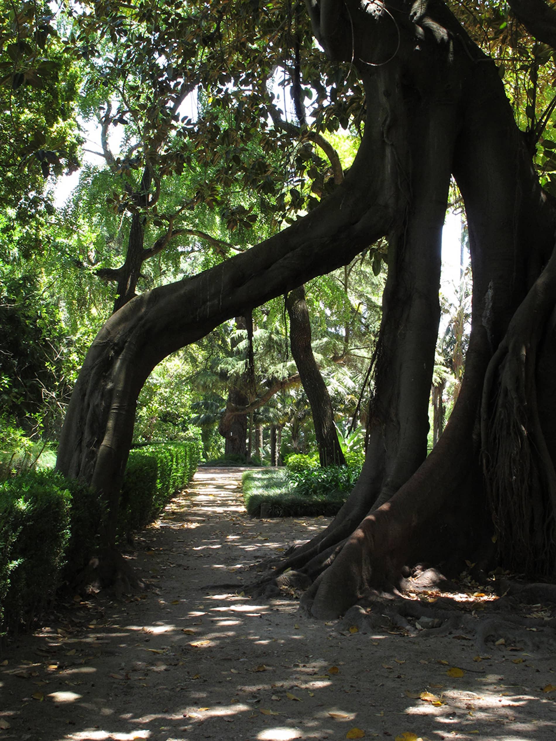 jardim-universidade-lisboa-15