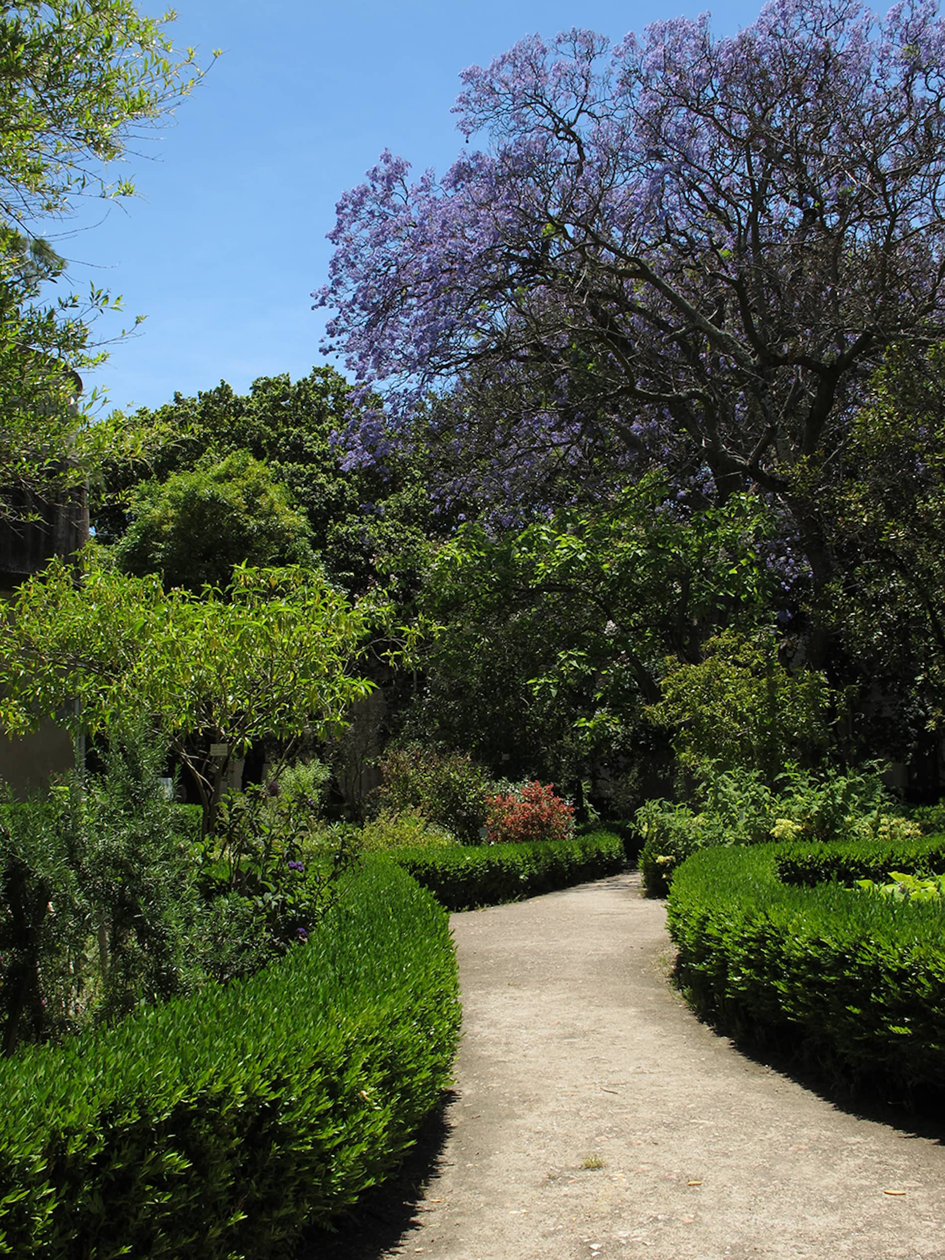 jardim-universidade-lisboa-3