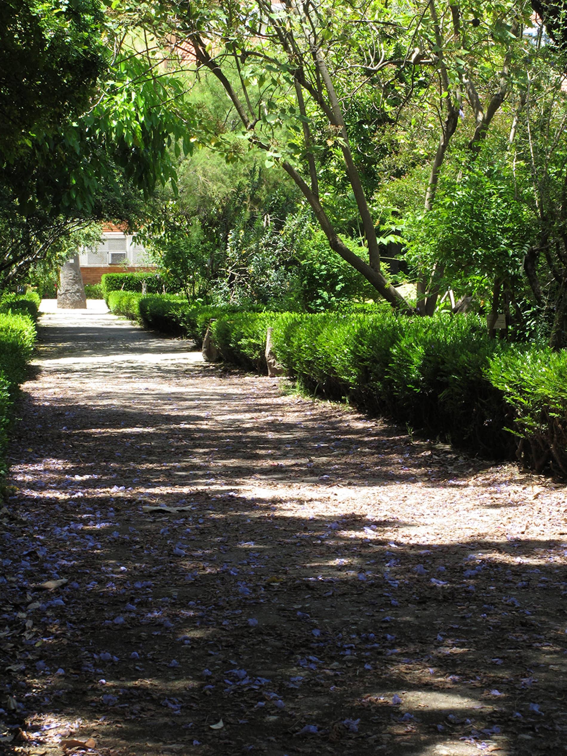 jardim-universidade-lisboa-5